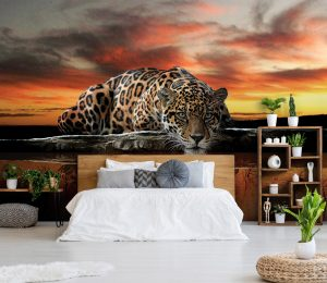 fotobehang luipaard panter cheetah fotobehangkoning